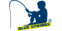 Blue Springs Srl